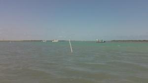 Fishing Pressure?